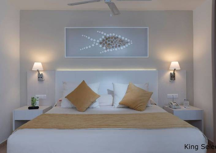 Select suite sea view natura park beach eco resort & spa punta cana