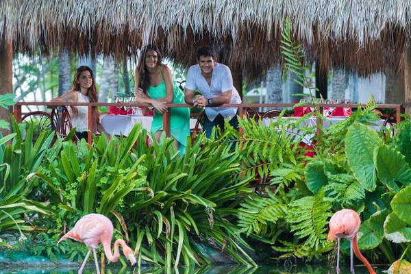 Services and complementaries natura park beach eco resort & spa punta cana